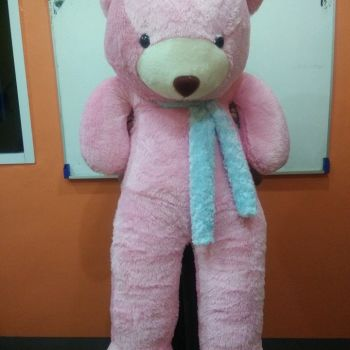 ตุ๊กตาหมีตัวใหญ่สีชมพู ผ้าฟันคอสีฟ้า
