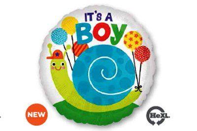 It's a boy หอยทาก