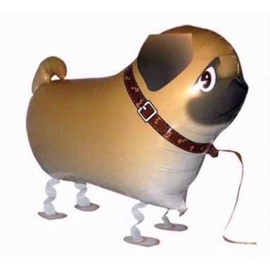 Air-walker น้องหมาปั๊ก