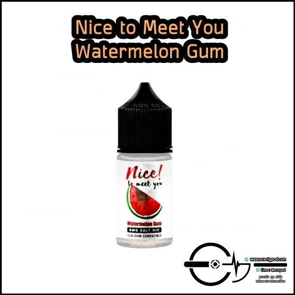 Nice to meet you Watermelon Gum
