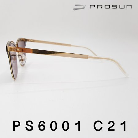 Prosun PS6001