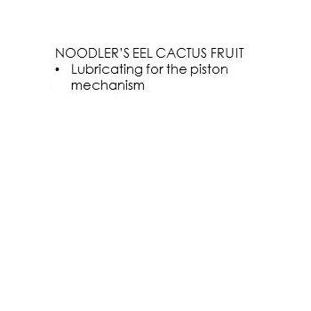 Noodler's - Eel Cactus Fruit (3Oz.)