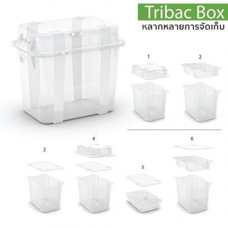 กล่องเก็บของ Tribac Box (ลด 50%)