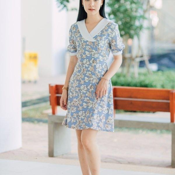 Pailin Doll Sleeved Dress