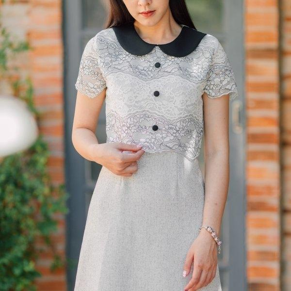 Collar Two Tone Lace Dress