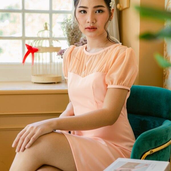 Minnie chiffon doll sleeve dress