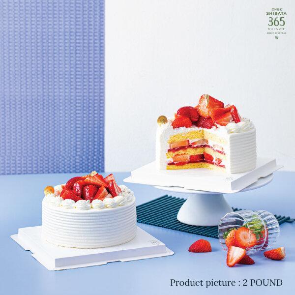 Strawberry Signature Birthday cake 2P ストロベリーシグネチャーバースディーケーキ