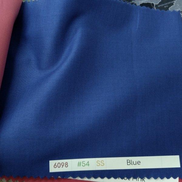 6098 Lawn 54 Blue